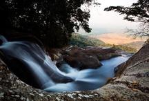 Photography natural world
