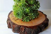 Arreglos Florales Leavesdesign / Para un regalo especial, para llenar tu lugar de trabajo de colores, para cualquier ocasion....