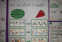 1st Grade Writing / by Shayanne McKown