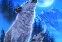 hyldende ulv måne