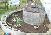 Garden ideas / by Jane Reinert