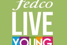 Live Young - Verde / Una LIVE YOUNG es consciente que tiene que estar en equilibrio con el mundo, el verde representa esa parte natural, armonía, frescura y esperanza.
