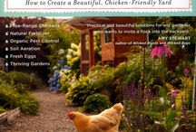 Self sufficiency and sustainability