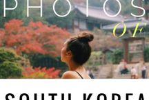 trip to korea