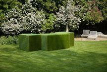 Eco Design / Complementi d'arredo che richiamano il Green e riportano alla natura.