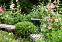 Exterior/Garden / by Beth Foort