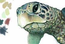 Sea Turtles / by Tanya Mears-Luciano