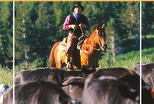 Dude Ranchers' Blog / Highlighting the best from the Dude Ranchers' Association blog featuring its 100+ member ranches. Dude ranch vacations in Wyoming, Montana, Arizona, Colorado, California, Oregon, Washington, New Mexico, Nebraska, South Dakota, Arkansas, and British Columbia -- all inclusive and on a budget!  Find things to do, ideas for families, working ranches, horseback riding and more.