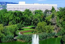 Danubius Hotel Flamenco /   Set in green surroundings, only 15 minutes from the heart of the city.     Start the day with a jog in the surrounding park, with its cool lake and willow trees.     The best choice on the way to or from Vienna     EXECUTIVE CLUB floors provide a quiet breakfast lounge with your favourite daily papers.     Ideal venue for meetings, with numerous separate function rooms and facilities.     Steer clear of the traffic jams! Take advantage of the hotel's garage and car park.