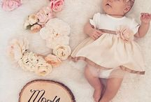 baby shoots