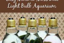 DIY: Aqua-projects