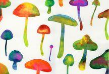 Mushrooms / by Diana Tarcatu