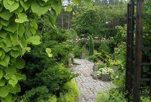 Djungel Jardin Exotique