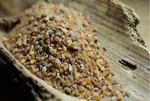 Encens en grains / Quelques une de nos résines d'encens naturels
