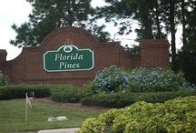 Davenport, Florida - Florida Pines