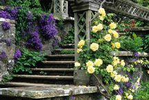 Lawn and garden spaces / by Barbara Dynow Lavin