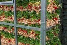 smarte løsninger til hagen