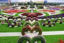 Amazing topiary/gardens