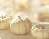 Gifts to give / Autumn finds / by TheBabyHandprintCo