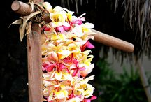 things I love about Hawaii / by Shelly Kay