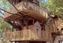le perfette case sull'albero