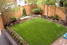 halaman  / landscaping backyard