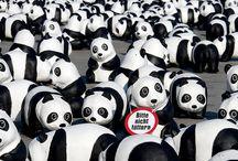 Pandas on Tour  / Anlässlich unseres 50. Geburtstages gehen wir von August bis Oktober 2013 mit 1600 Panda-Skulpturen auf Deutschlandtour. So viele der Großen Pandas leben noch in Freiheit. Damit möchten wir auf die Zerstörung des Lebensraums vieler Arten aufmerksam machen.