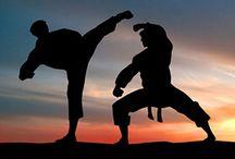 A World of Martial Arts ...