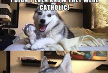 All things Catholic!