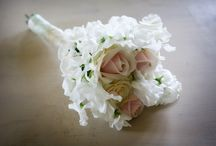 Tied the Knot / wedding ideas