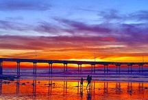 California's Gold / by Karen Reece