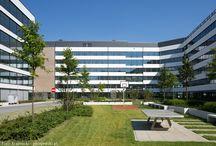 Biznes Garden - Poznań / Zagospodarowanie terenów zielonych przy obiekcie Biznes Garden w Poznaniu. Sprawiamy, że złożony proces inwestycyjny zmienia się w piękne miejsce służące społeczeństwu.