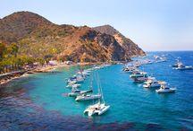 Catalina Island Destination Weddings / #catalina #island #destination #wedding