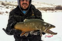 HD ICE lure photos! / Great Catches with the HD ICE by Dynamic Lures