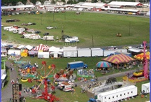 Festivals in the SRV