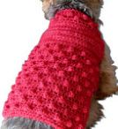 Dog sweaters.