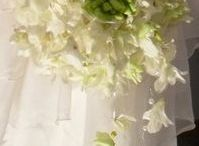 the bridal bouquet - Angelica Lacarbonara