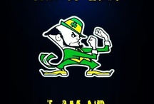 Go IrIsH!!! / by Toni Reyes