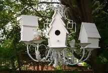 Birdhouses / by Eileen Wheeler
