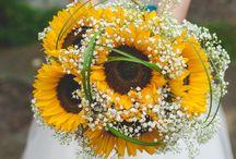 Luke n Laura wedding