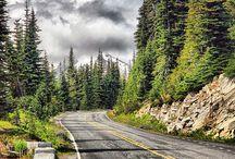 Road -path, Yollar, camino, le chemin, der weg, путь / Road, path, yollar, camino, le chemin, der, weg, путь
