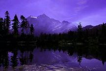 purple relax!!