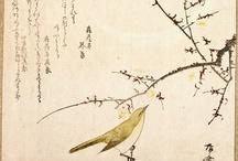Pintores japoneses tradicionales