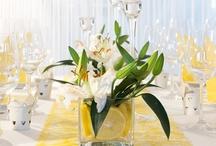 Zitroniges Gelb   Hochzeitsdeko / Mit der Tischdekoration in zitronigem Gelb kommt der Sommer auf eure Hochzeitsfeier. Warme Gelbtöne ziehen sich durch den Tischläufer und frische Zitronen und Blumen lassen diese Dekoration strahlen. Erhältlich unter meine-hochzeitsdeko.de