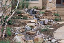 Water feature / Yard