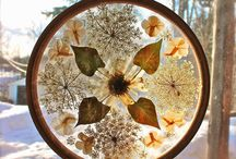 pressed flower projects / Loads of ideas for pressed flower craft projects!