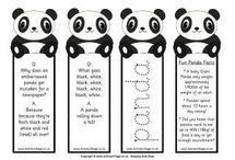 all bout panda