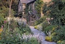 Olde English Country Garden