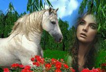 Láska ke koňům