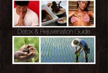 Detox & Healthy Slide Presentations